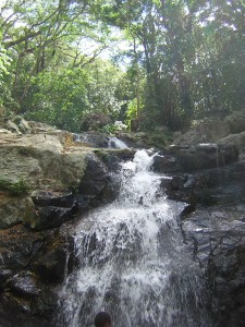 Waterfall In Fiji